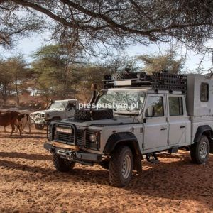 Land Rover Defender 130  w Tamorte Bukari - Blog podróżniczy - PIES PUSTYNI