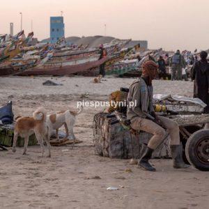 Port rybacki w Nawakszut 10 - Blog podróżniczy - PIES PUSTYNI
