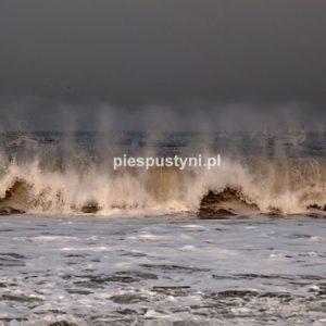 Port rybacki w Nawakszut 8 - Blog podróżniczy - PIES PUSTYNI