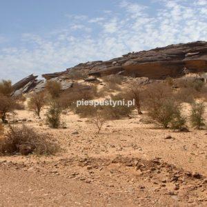 Pustynny region Adrar 10 - Blog podróżniczy - PIES PUSTYNI