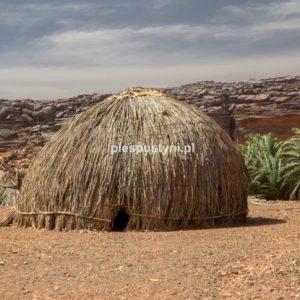 Pustynny region Adrar 6 - Blog podróżniczy - PIES PUSTYNI