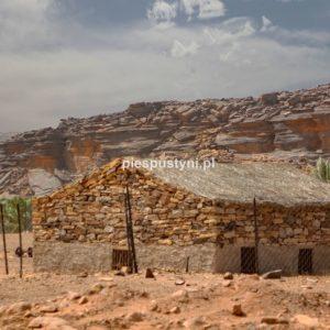 Pustynny region Adrar 7 - Blog podróżniczy - PIES PUSTYNI