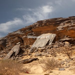 Pustynny region Adrar 8 - Blog podróżniczy - PIES PUSTYNI