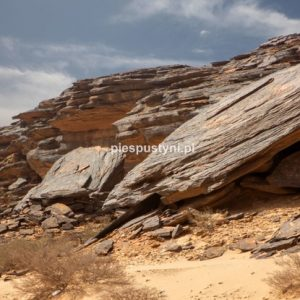 Pustynny region Adrar 9 - Blog podróżniczy - PIES PUSTYNI
