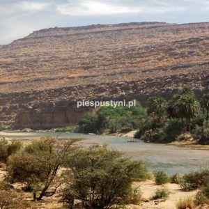 Wādī Sakallīl 1 - Blog podróżniczy - PIES PUSTYNI
