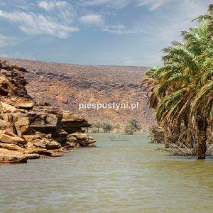 Wādī Sakallīl 14 - Blog podróżniczy - PIES PUSTYNI