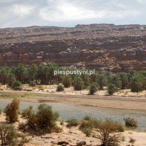Wādī Sakallīl 5 - Blog podróżniczy - PIES PUSTYNI