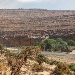 Wādī Sakallīl 6 - Blog podróżniczy - PIES PUSTYNI