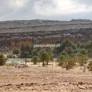 Wādī Sakallīl 7 - Blog podróżniczy - PIES PUSTYNI