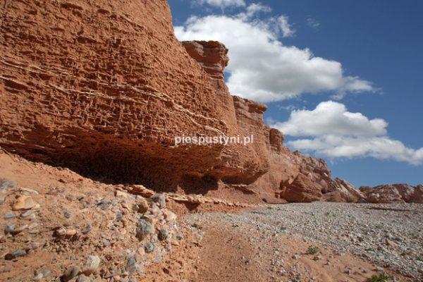 Oued Azinous 5 - Blog podróżniczy - PIES PUSTYNI