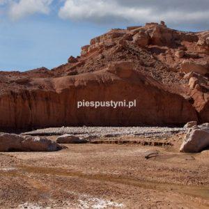 Oued Azinous 6 - Blog podróżniczy - PIES PUSTYNI