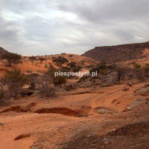Al-Asaba 1 - Blog podróżniczy - PIES PUSTYNI